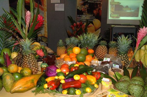 Estre imiento gastroenterologo el salvador - Frutas para ir al bano ...